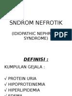 SNDROM_NEFROTIK.ppt