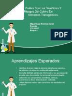 Miguel Trabajo Power Point Presentacion Biologia