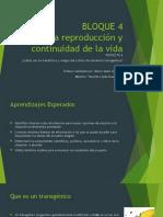 Proyecto 4 Arturo