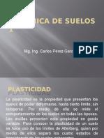 3ra Clase Plasticidad