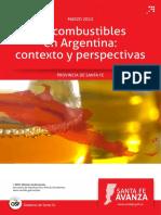 Informe Biocombustible