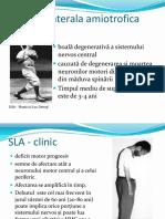 2a-sla-sm-parkinson.pdf