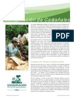 castañas y conservación madre de dios.pdf