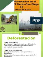 La Deforestación en el sector El Rincón-San Diego.pptx