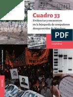 Libro Cuadro33