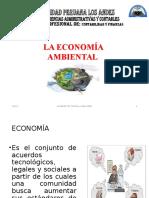 3sesion 5 - Economia Ambiental - Copia (2)