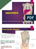 abdomen verano- FINAL.pptx