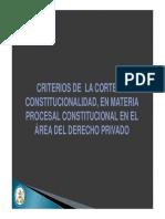 Criterios de La Corte en Materia Procesal Constitucional en El Área Del Derecho Privado Por Astrid Vega