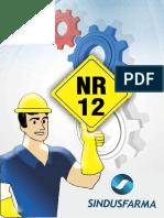 299138668-Manual-Nr12-Reduzido.pdf