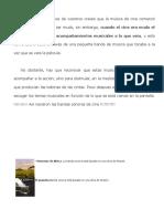 Bandas-Sonoras-Apuntes.docx