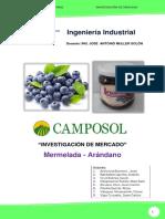 Proyecto Final _camposol Sa - Arandano Cuantitativa Ok - Expo