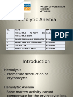 Group2 Hemolytic Anemia