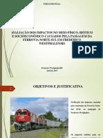 impacto ferrovia norte-sul Frederico westphalen