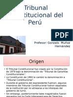 tribunal constitucional del peru