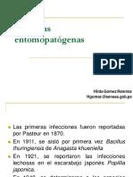Bacterias Entomopatógenas