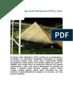 FVH Artesanal Forraje Verde Hidropónico