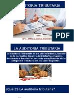 AUDITORIA TRIBUTARIA (1)
