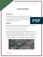 LAGUNAS PRIMARIAS.docx