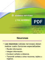 Sistema Nevioso.ppt