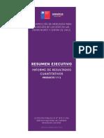 Resumen-ejecutivo Estudio Cuantitativo Perfil Mercado
