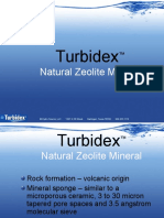 Turbidex  2009 ppt