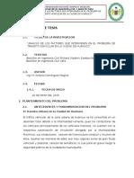 PLAN DE TESIS RICHARD toño.docx