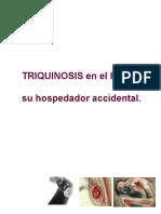 Ensayo Triquinosis