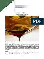 A 1 Sugar Beet Molasses General Information en LQS INT1alle