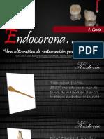Endo Corona
