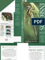Animales - Insectos y Arañas de España y Europa.pdf