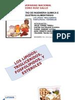 DIAPOSITIVAS DE LIPIDOS Y PROTEINAS-NUTRICION.pptx