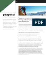 Ldc Casestudy Patagonia