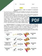 RESUMEN TEA7 RECUPERAR.pdf