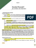 PROCESAL I y II.pdf