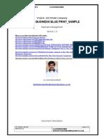m Business Blue Print Sample