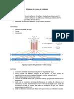PÉRDIDA DE CARGA.pdf