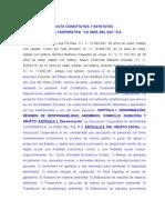 Modelo Acta Constitutiva Prelimina 2