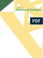 13-Petróleos de Venezuela.pdf