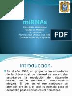 miRNAs
