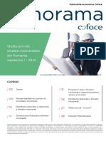 Studiul-Insolventelor-2014-H1.pdf