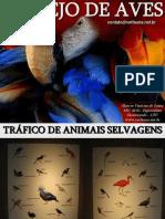 Aula 01 Manejo de Aves (1)