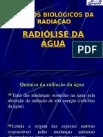 Radiolise