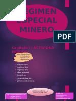 regimenespecialminero-141002124204-phpapp01.pptx