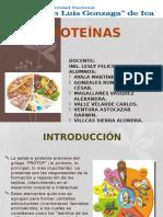 Proteinas - Quim Organica
