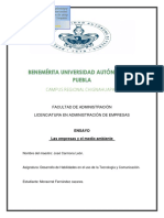 ensayo-final-150702141512-lva1-app6891