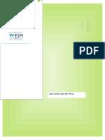 Informe Final SPE 2017 - 1