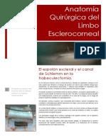 Anatomía Quirúrgica de Ángulo Esclerocorneal