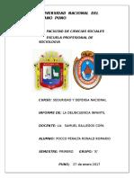 Informe de Gallegos (s.d.n)