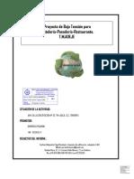 modelo proyecto electrico 2015.pdf