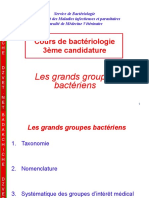 Systematique Bacterienne